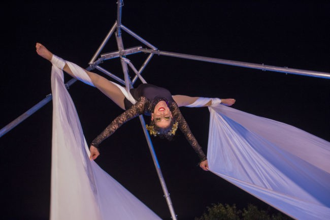 Liz | Aerial Performance | Silks | Performer | Imagine Circus | Cirque | Raleigh, NC