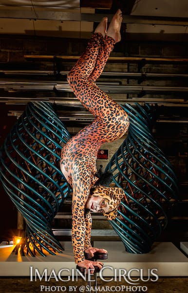 Acrobat, Contortionist, Handbalancer, Cheetah, Leopard, Performer, Brittany, Imagine Circus, Walter Magazine, Photo by Gus Samarco