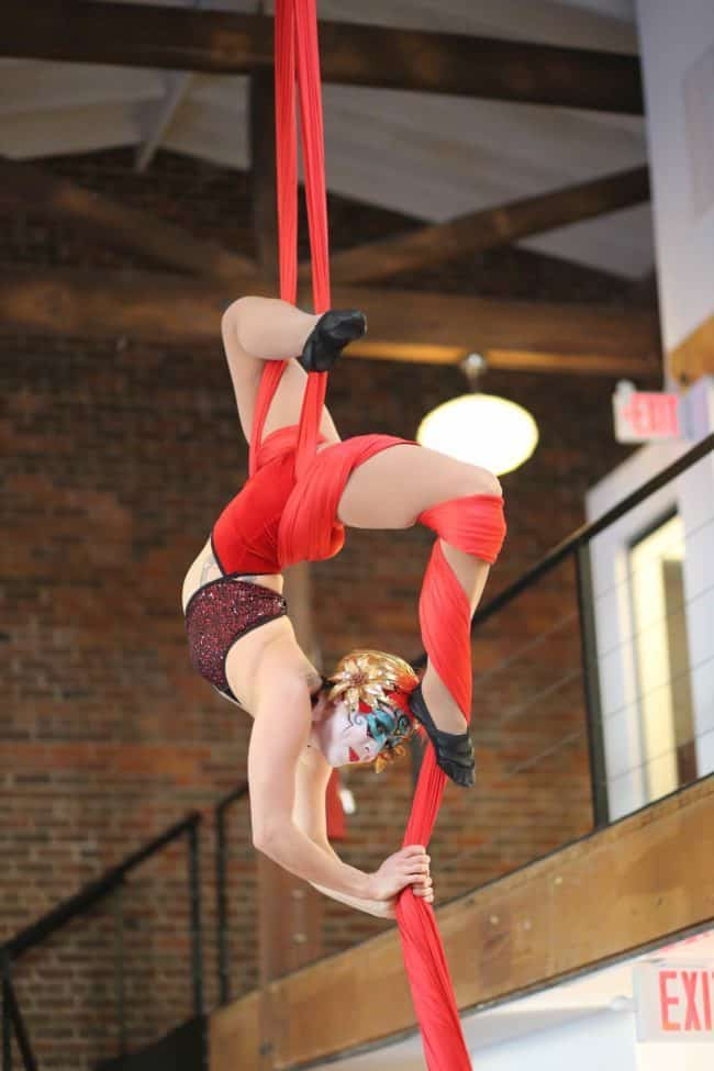 Aerial Performer | Silks | Modern Cirque | Liz Bliss | Imagine Circus | Raleigh, NC