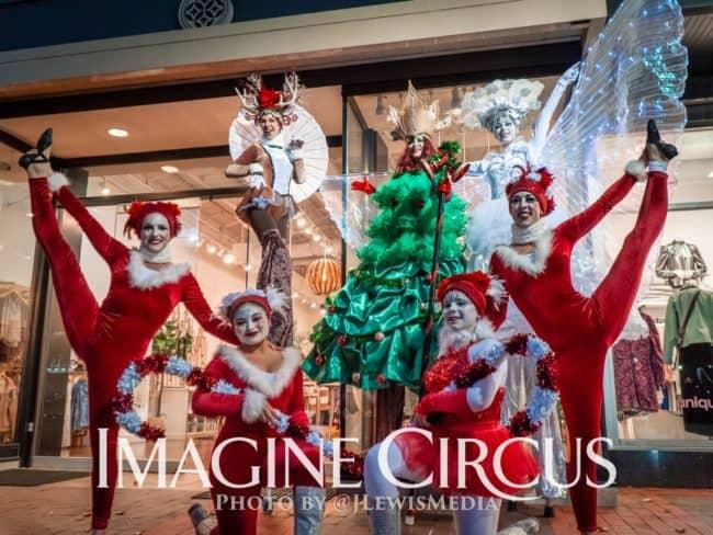 Group Photo, Winter Holiday Entertainment, Reindeer, Christmas Tree Cutie, Snow Queen, Stilt Walkers, Acrobats, Cameron Village, Imagine Circus Performer, Photographer JLewis Media