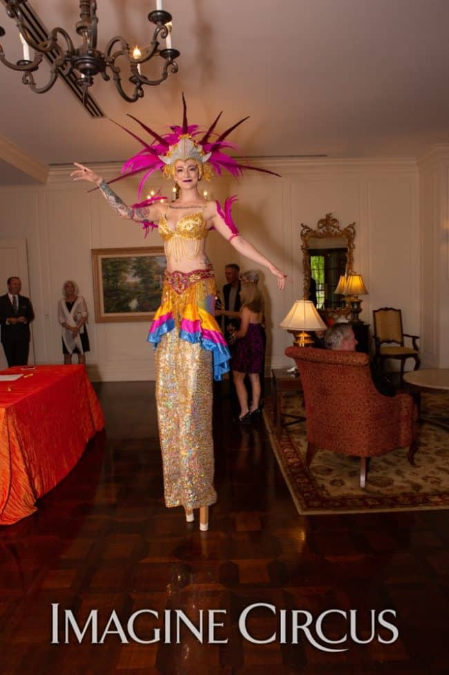 Stilt Walker, Carnival, Samba Dancer, Imagine Circus, Performers, Azul