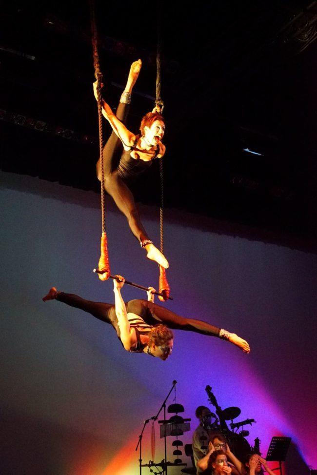 Light Pours In | Aerial Performance | Partner Aerials | Trapeze | Imagine Circus | Cirque | Raleigh, NC