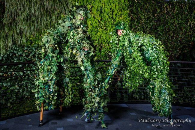 Jungle | Living Statue | Vine Quad Stilts | Performers | Imagine Circus | Cirque | Raleigh, NC