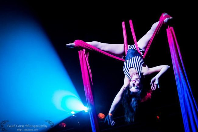 Robin | Big Top Circus | Aerial Silks | Silk Performer | Aerial Fabric | Imagine Circus | Cirque | Raleigh, NC