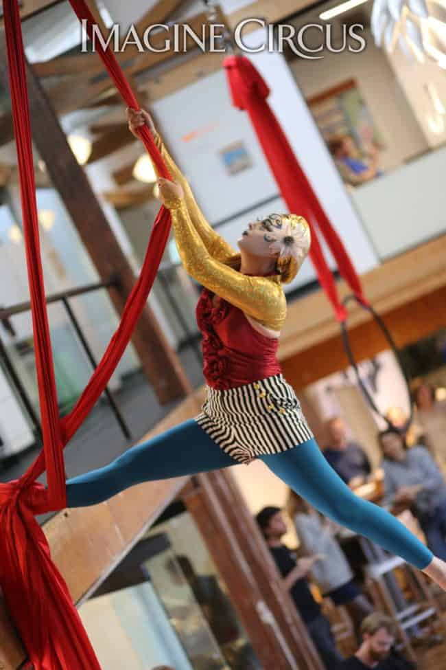 Aerial Silks | Performer | Katie R | Imagine Circus | HQ Raleigh | Photo by Kaili Ingram