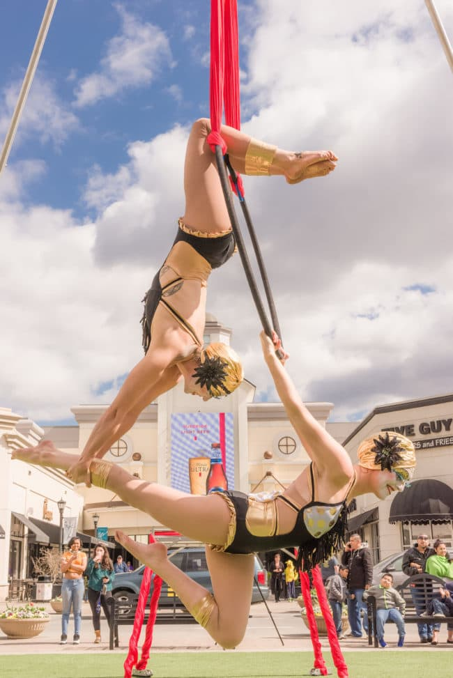Aerial Hoop Duo Act | Lyra Cirque Aerialist | Liz Bliss & Katie | Imagine Circus | Raleigh, NC
