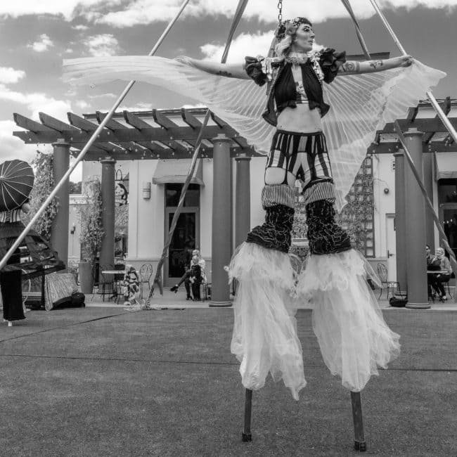 Stilt Walker with Wings | Cirque Performer | Lacy Blaze | Imagine Circus | Raleigh, NC