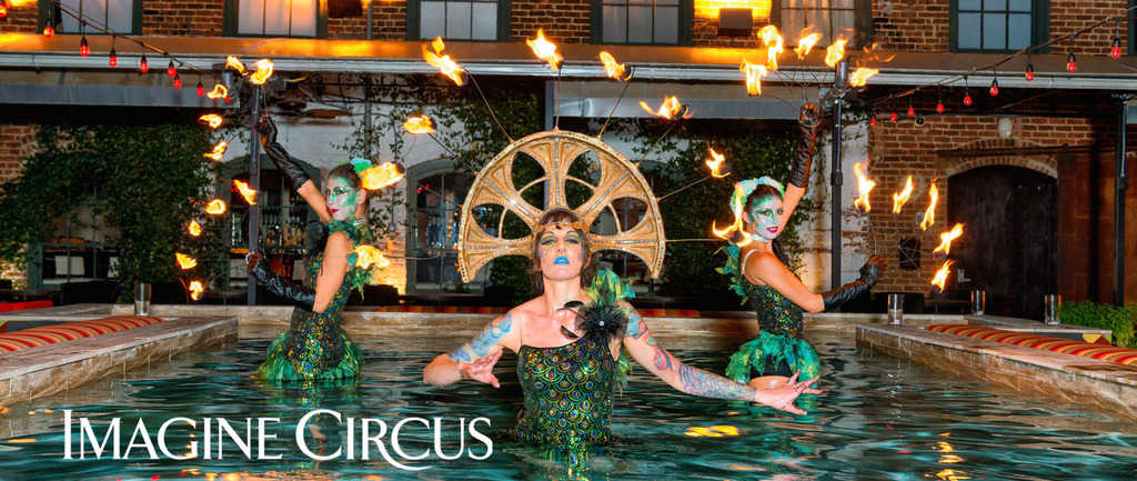 Imagine Circus presents