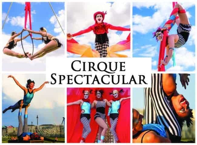 Cirque Spectacular | Imagine Circus | Shows | Feature Image