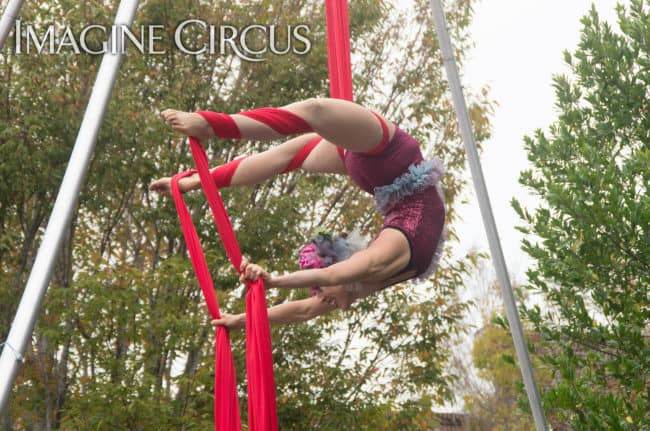 Liz Bliss, Aerial Silks, Mum Fest, Imagine Circus, Photographer Charles Lytton