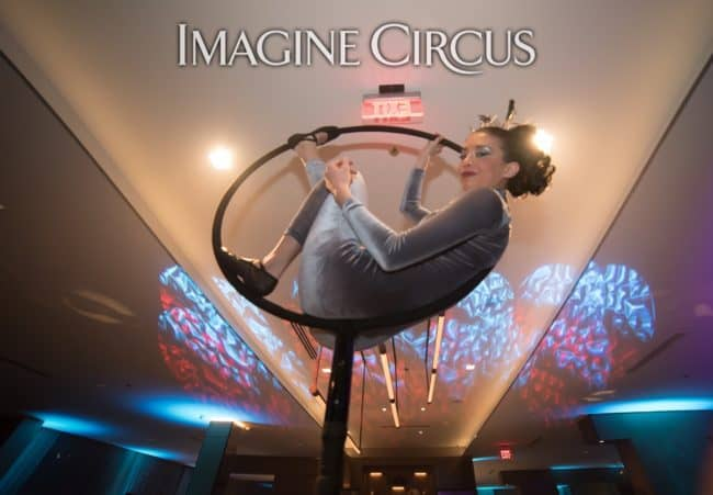 Aerial Bartender, Aerial Hoop Performer, Kaci, Chapel Hill, NC, Imagine Circus, Photo by Adrian Moreno of amproductphotography.com