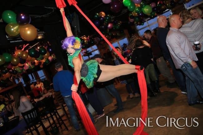 Aerial Silks, Aerial Dancer, Mardi Gras, Imagine Circus, Performer, Liz, Photo by Ted Lewis