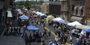 Celebrate Princeton Street Fair: Princeton, WV @ Mercer Street Grassroots District