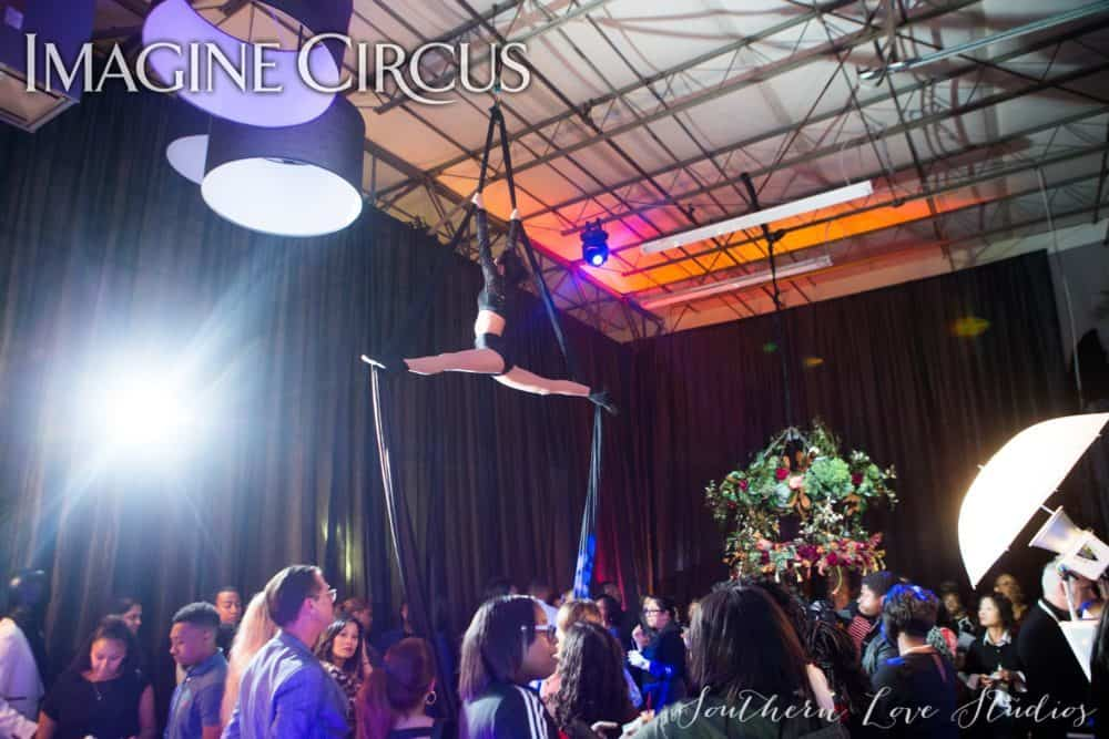 Aerial Dancer, Aerial Silks, Upscale Event, Performer, Kaci, Imagine Circus, Photo by Southern Love Studios