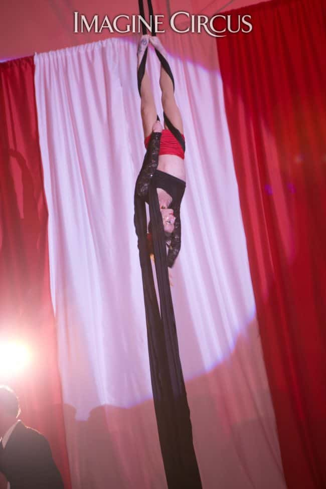 Aerial Silks, Aerialist, Upscale Event Entertainment, Wilmington, NC, Imagine Circus, Performers, Brittany, Jennifer Simpson Photography