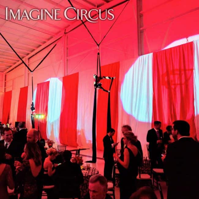 Aerial Silks, Aerialist, Upscale Event Entertainment, Wilmington, NC, Imagine Circus, Performer, Liz, Jennifer Simpson Photography