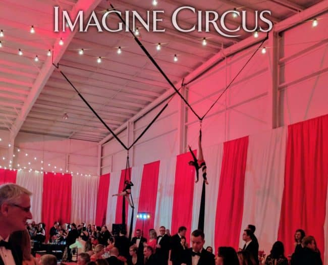 Aerial Silks, Aerialist, Upscale Event Entertainment, Wilmington, NC, Imagine Circus, Performers, Jennifer Simpson Photography