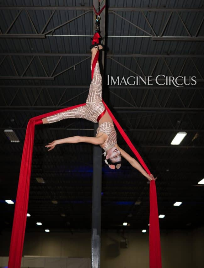 Aerial Silks, Aerial Dancer, Aerialist, Upscale Event, Charlotte, NC, Grand Opening, Imagine Circus, Performer, Kaci, Photo by Rick Belden
