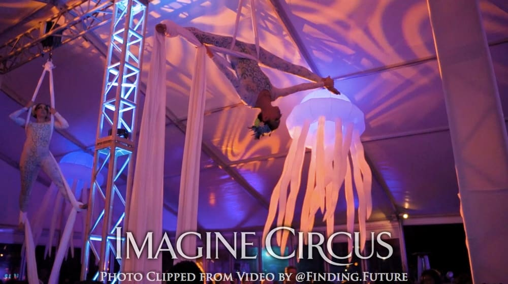 Under the Sea, Aerial Dancer, Performer, Kaci, Imagine Circus, Photo by Finding Future