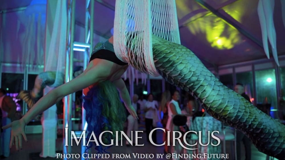 Mermaid Aerial Dancers, Aerial Net, Imagine Circus, Performer, Photo by Finding Future