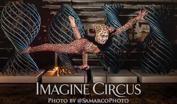 Acrobat Contortionist Hand balancer, Cheetah Leopard, Brittany, Imagine Circus, Walter Magazine, Photo by Gus Samarco