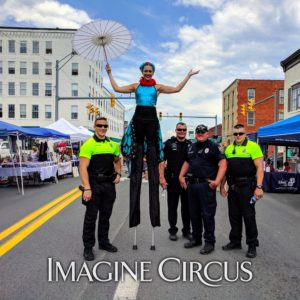 Celebrate Princeton Street Fair: Princeton, WV @ The Mercer Street Grassroots District