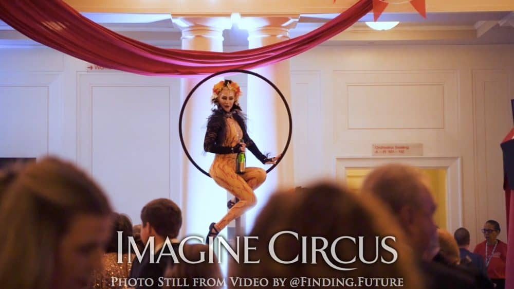 Gold, Yellow, Cirque Bird, Aerial Bartending, Lollipop Lyra, Oddball Gala, Imagine Circus, Performer, Whitney, Photo Still from Video by Finding Future